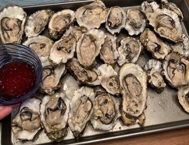 Fresh Willapa Bay Oysters